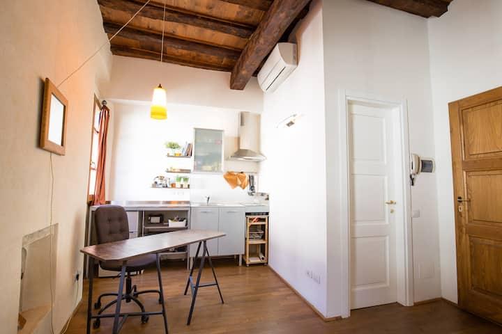 Studio in Santo Spirito/Borgo San Frediano