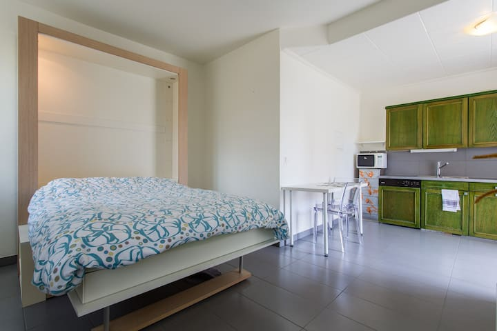 Studio bussigny-près-Lausanne  EPFL - Bussigny-près-Lausanne - Apartment