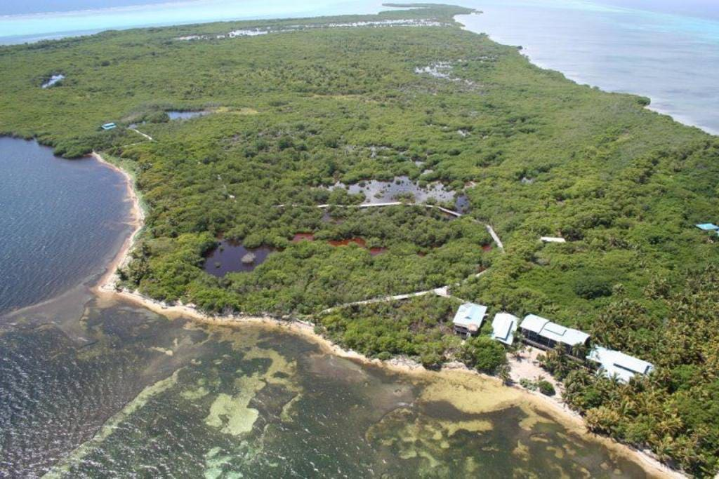 Aerial view of the private island