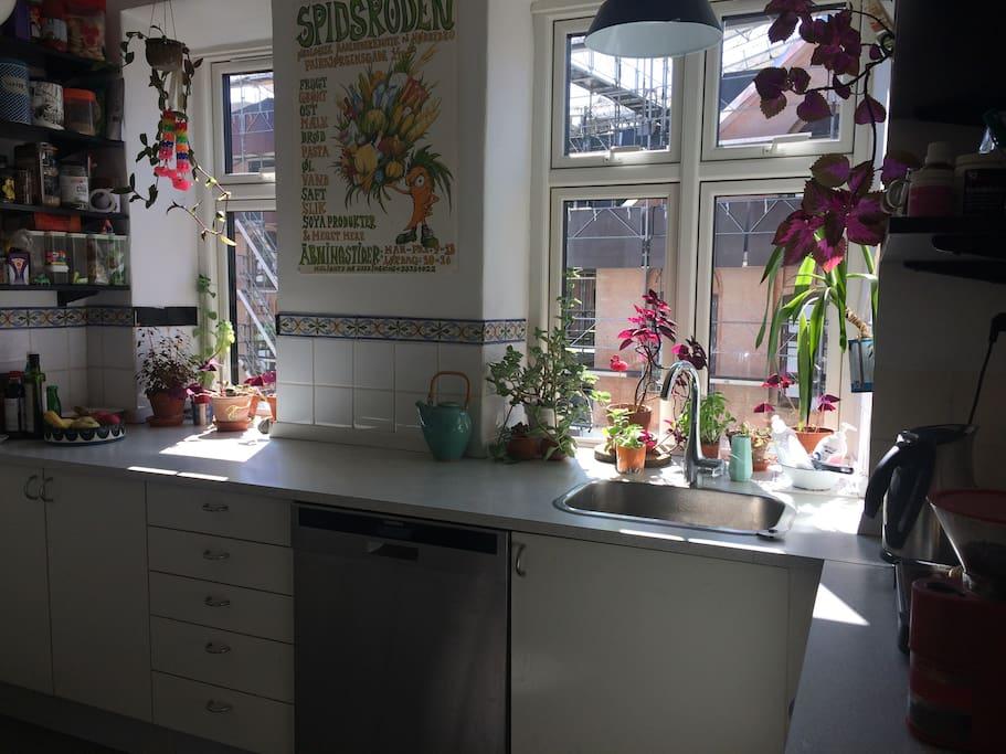 Kitchen with a dishwasher, gas stove, fridge and freezer.