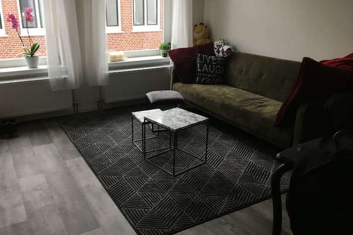 Bright apartment in city centre of Groningen