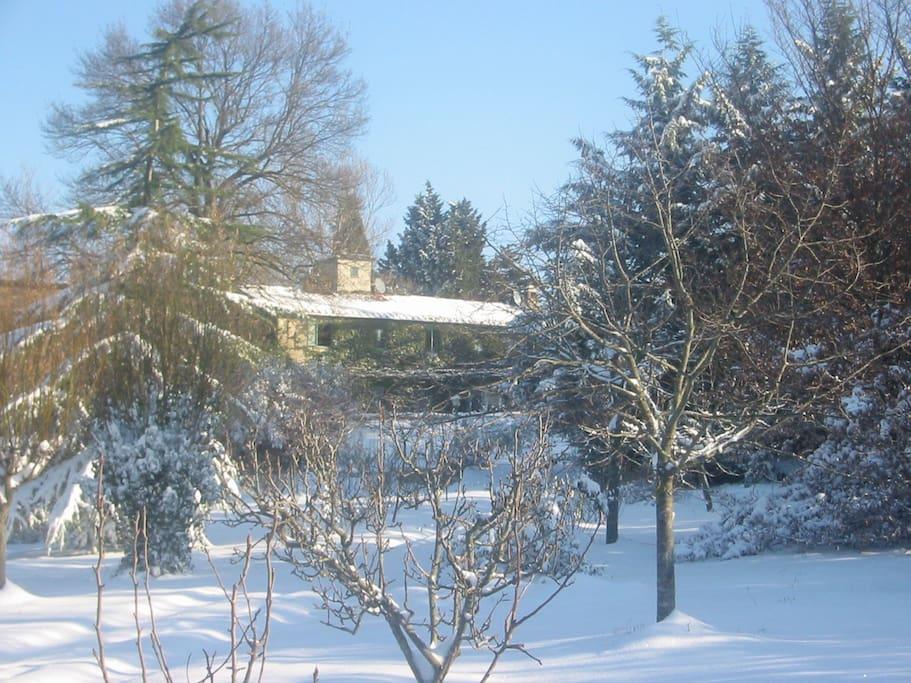 Wind house in winter