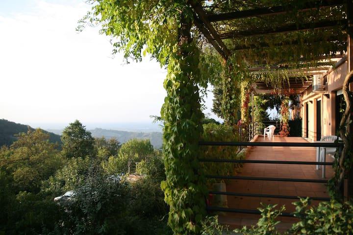 Romantico monolocale in collina - Zola Predosa - Apartment