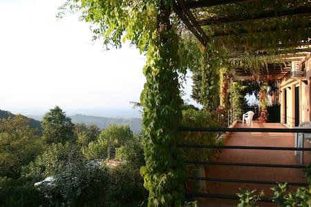 Romantico monolocale in collina - Zola Predosa