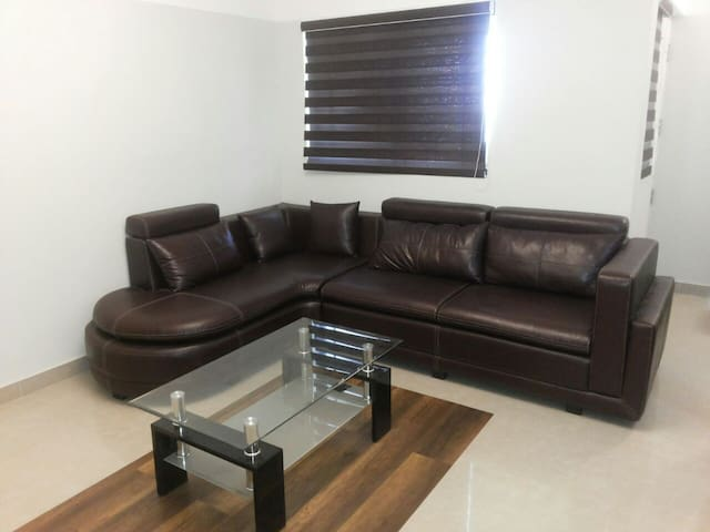 Living room -  leather sofa and coffee table