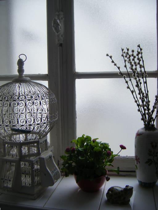 devant la fenêtre dans la salle debain