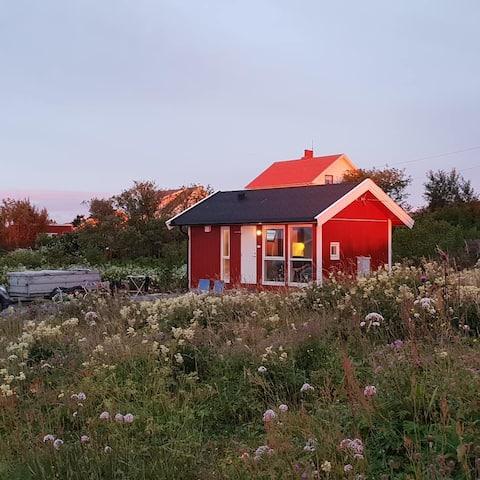 Praktisk og koselig liten hytte ved havet  - Vega