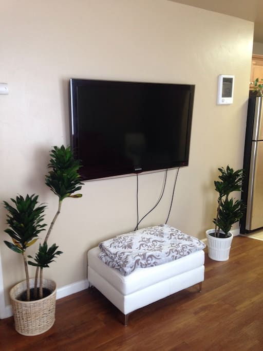 55 inch Samsung with blueray/DVD player. Ottoman available to use in any room desired.