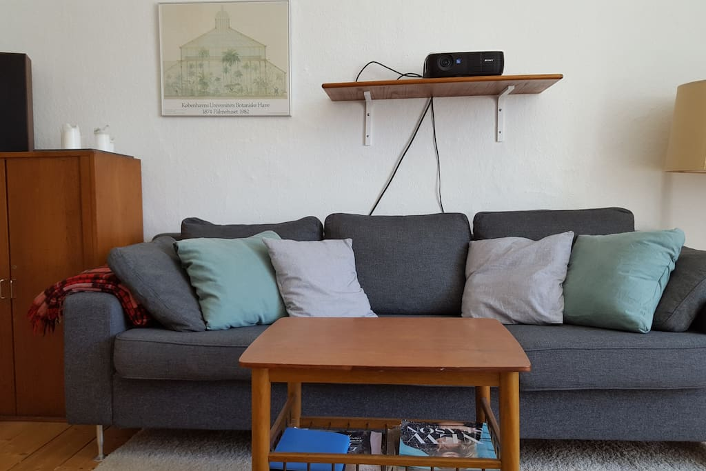 Our sofa is comfy and perfect to hang out on.
