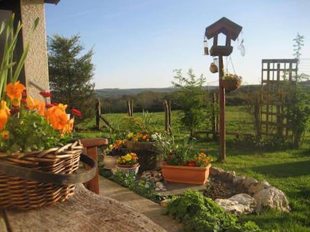 Peaceful smallholding lovely views - Llangoedmor