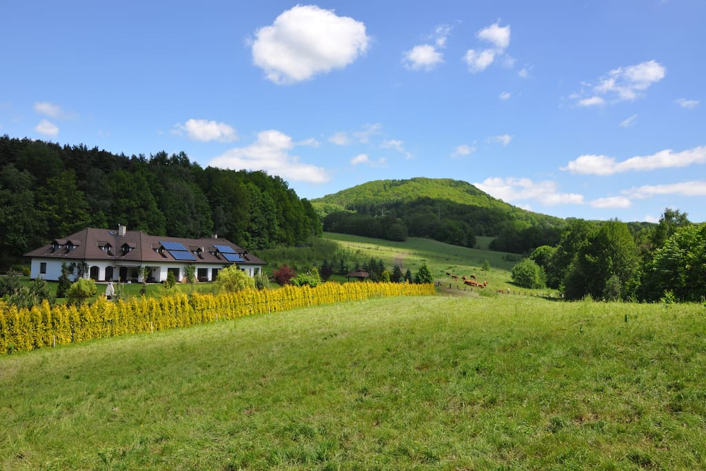 Accommodation Bohemian Switzerland - Horseback riding. Agro tourism