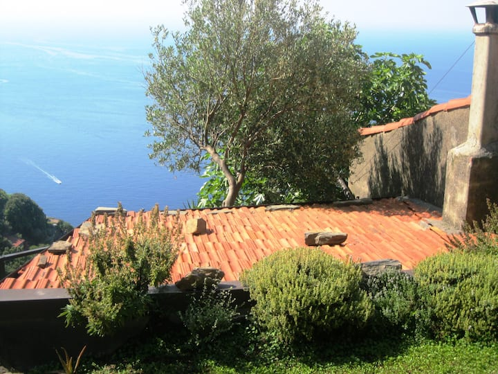 Tramonti House an amazing view in Cinque Terre!!