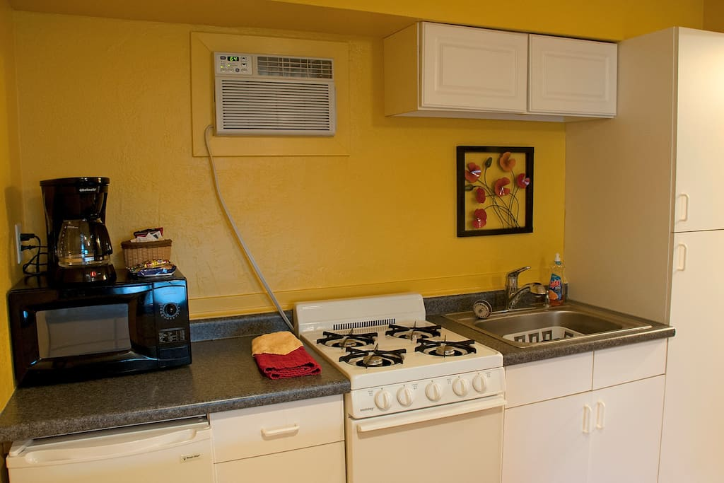 Fully equipped kitchen with microwave, fridge and stove.