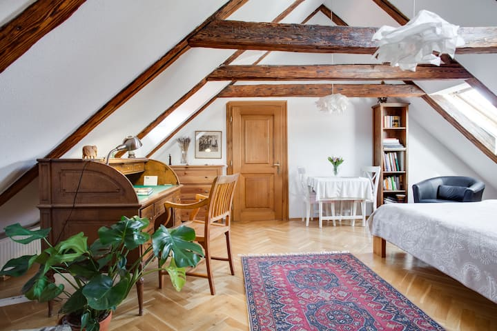 Cozy attic apartment in old Prague center
