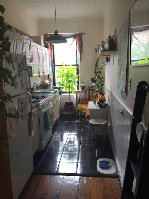 1 Bedroom Available For The Entirety Of September
