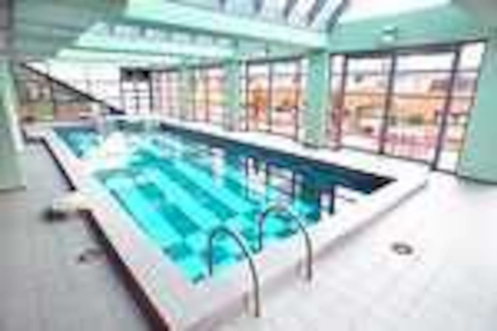 Magnificent indoor heated swimming pool and spa and sauna