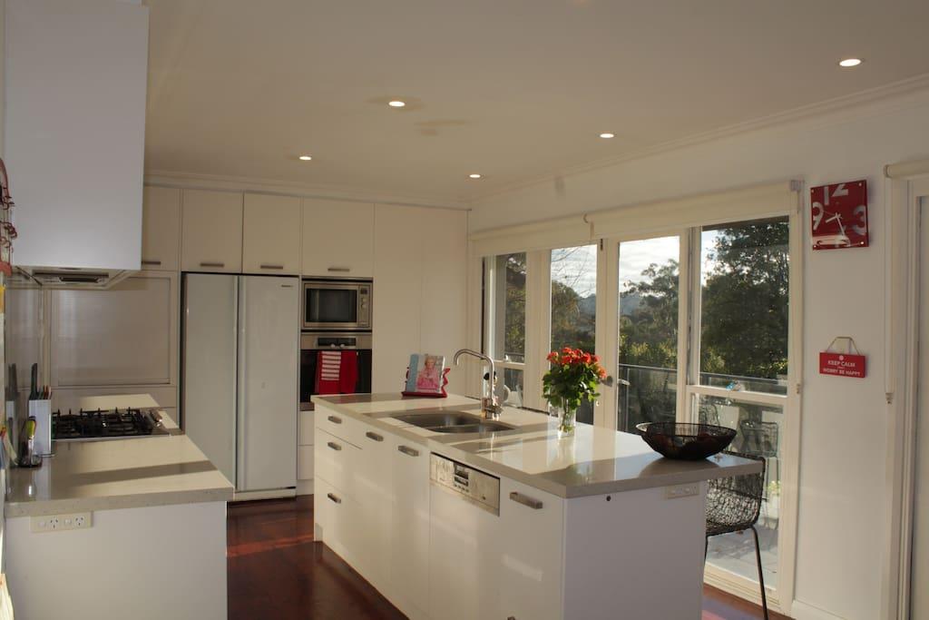 Modern kitchen overlooking Garigal National Park