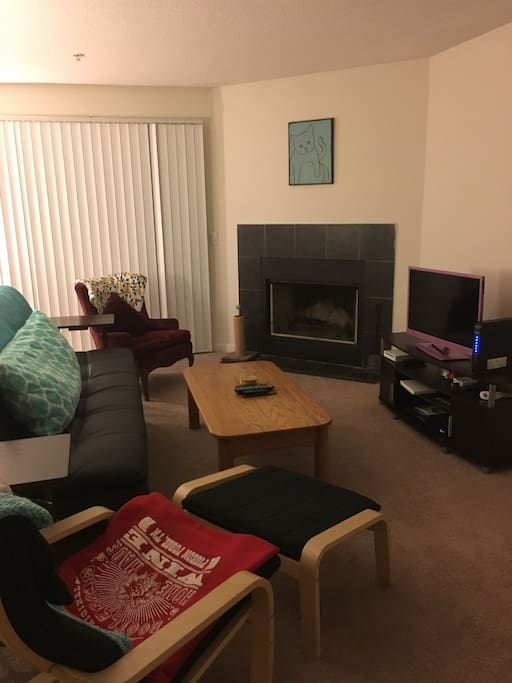 Living room with couch that folds out into a full size bed.