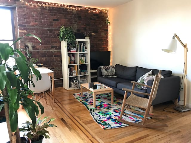 Room in a lovely 2br apartment - East Williamsburg