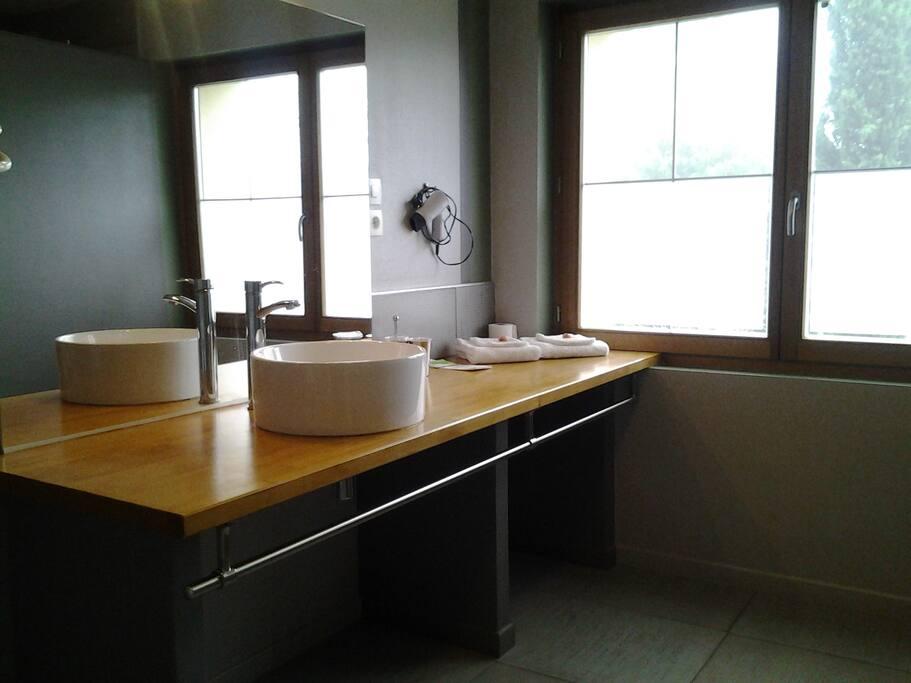 salle de bain avec une vasque, toilette et douche à l'italienne