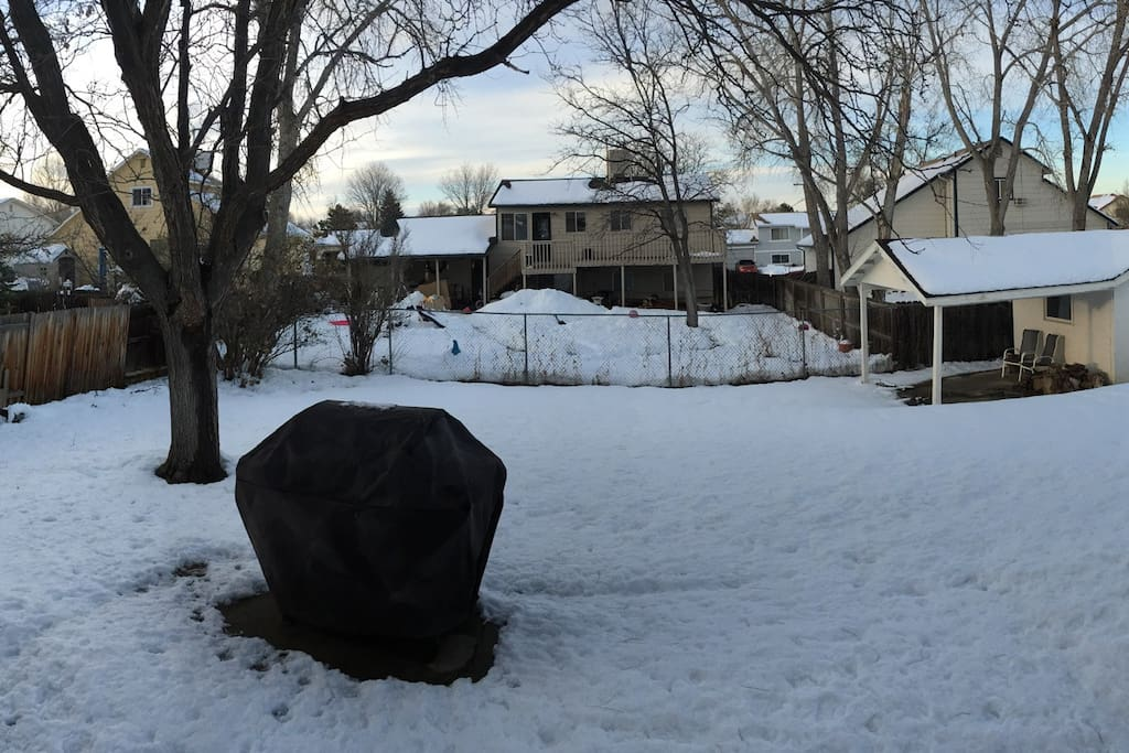 A snowy backyard (there is grass underneath). The yard is fenced with a gate that locks.