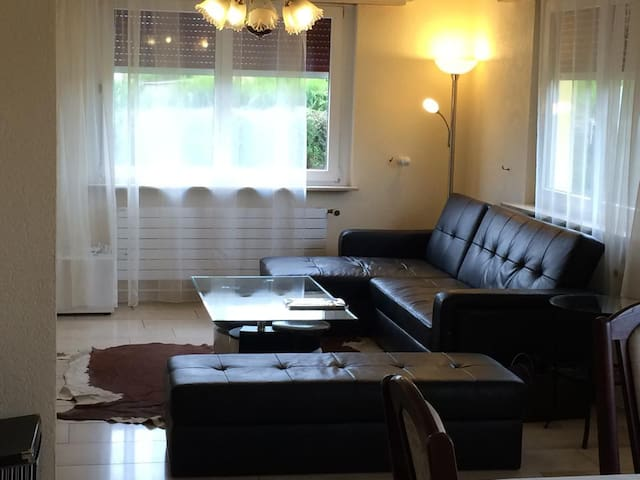 Spacious Family Home(Basel - 15min) - Kembs