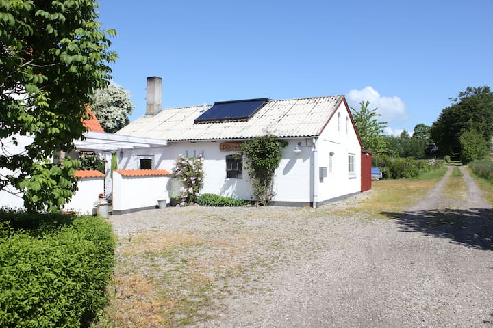 Large room, Forest, Beach, Fields, Breakfast - Hejls - Bed & Breakfast