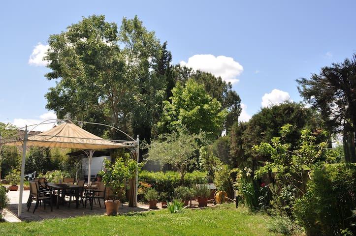 Camera sulla via francigena (2) - Lucignano D'arbia - Apartment