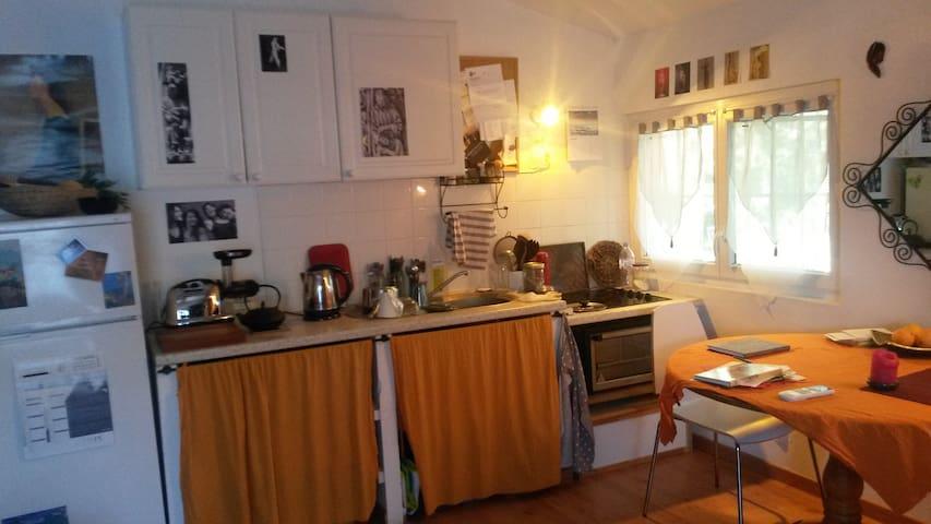 joli studio climatisé +jardin calme - Entraigues-sur-la-Sorgue - Apartment