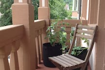 Helles Altbauzimmer mit Balkon.