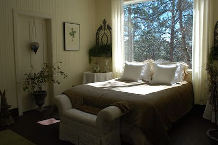 A large mountain Garden room, breakfast & Jacuzzi - Palmer Lake - B&B