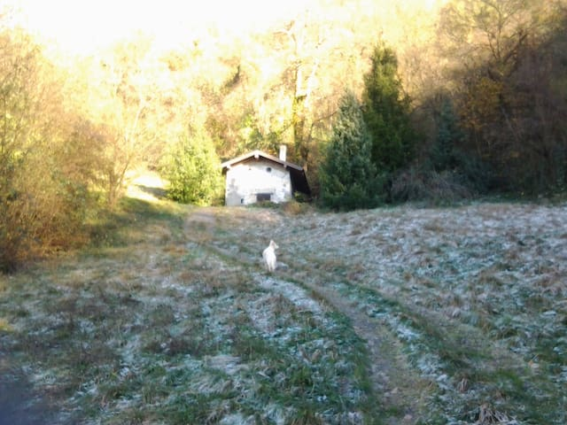 La casetta nel bosco - Vestone Brescia - Kabin