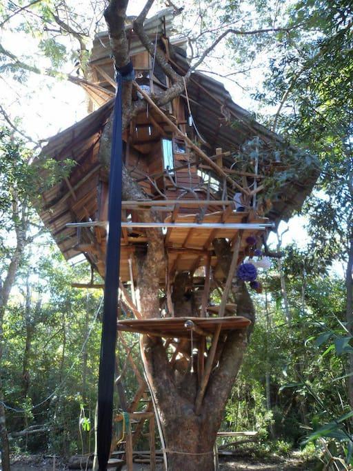 Esta linda casa da árvore possui 3 plataformas. A primeira é uma varanda, a central contém cozinha, sala e banheiro, e o mezanino a cama de casal.