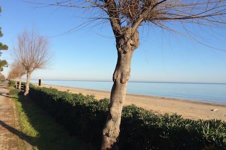 La mansarda sul mare - Pineto - Pis