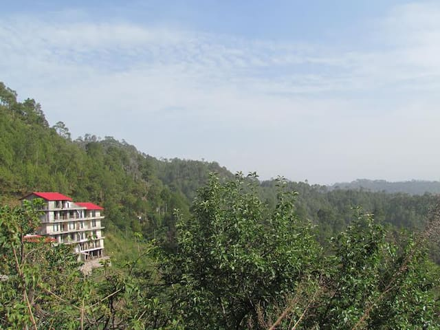 Whispering Pines Home Stay,Dharmpur - Tehsil Kasauli  - Bed & Breakfast