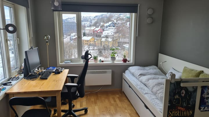 Cosy studio with view, close to centre