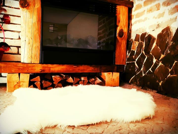 1 designer apartment in the heart of the city mini