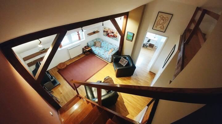 Rustic Penthouse