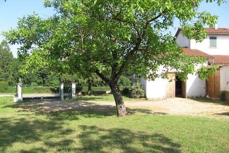 Ferme Lyonnaise, accueil chevaux - Civrieux-d'Azergues