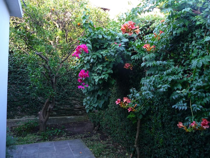 Close to beach in Montevideo, cozy, green patio