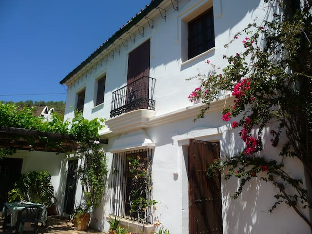 Garden Villa in Andalusia