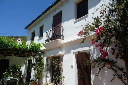 Garden Villa in Andalusia - Daimalos