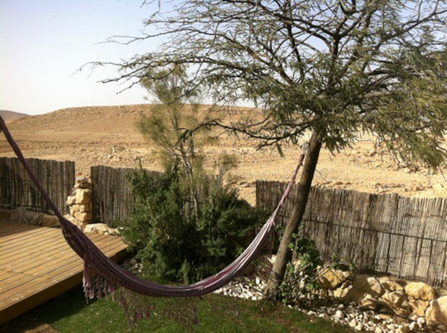 Peaceful backyard view into the desert