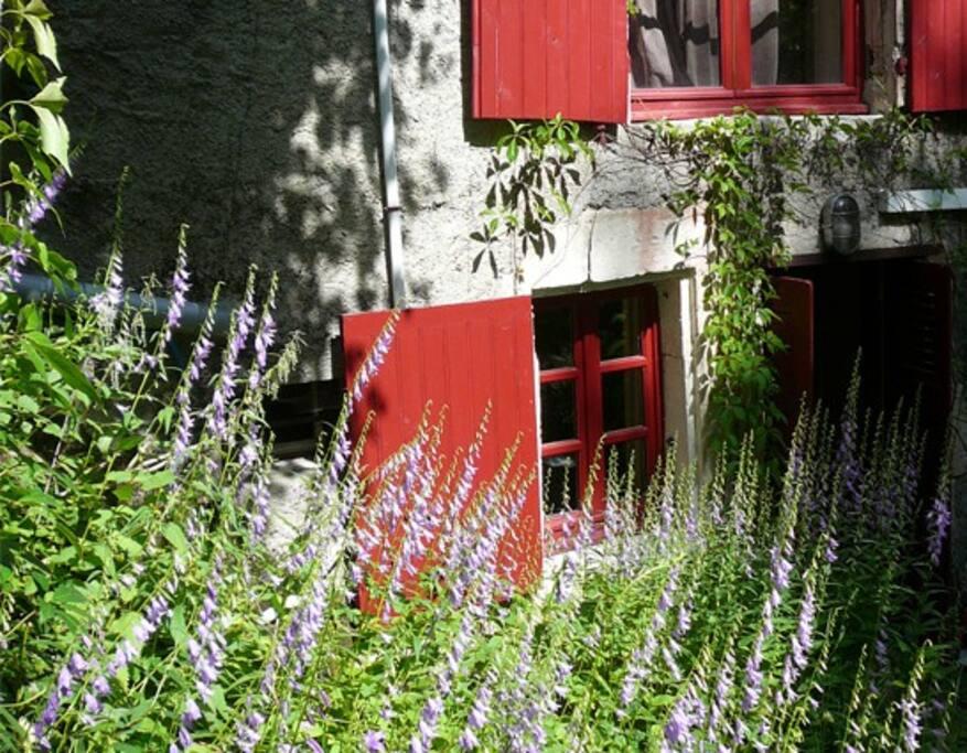 La chambre du mûrier donne sur le jardin