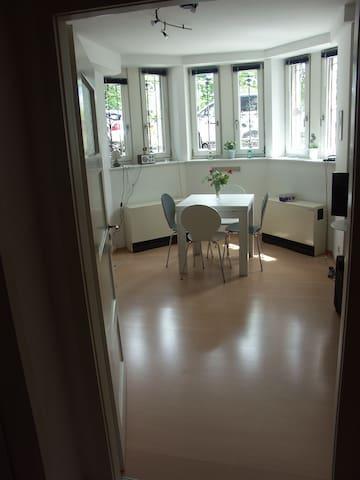 2-Zimmer-App. Innenstadt Tübingen - Tübingen - Appartement