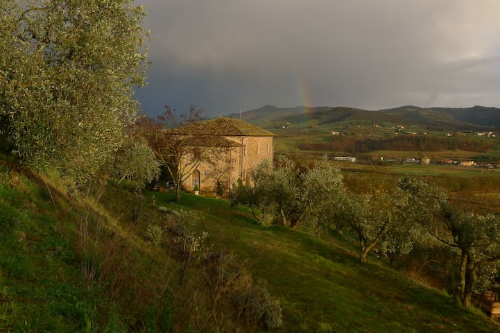 We live in the rain shadow of Mt. Cetona to the south with the hills of Trasimeno protecting us from the North.