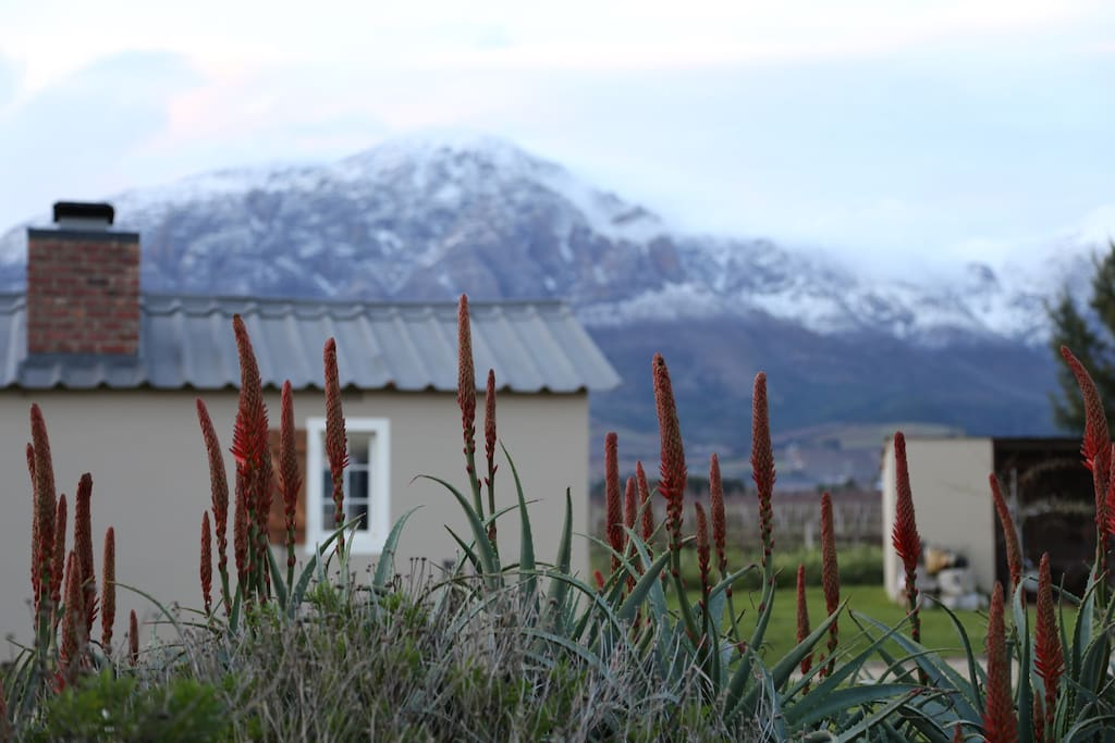 Malbec Cottage in the winter