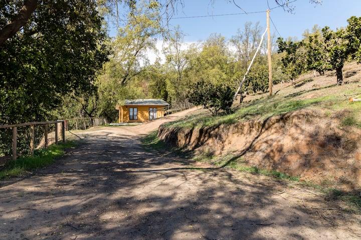 Cabañas ecológicas Paso del León, Olmué