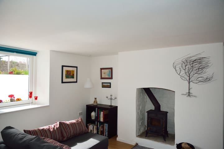 Cosy Apartment - Dublin
