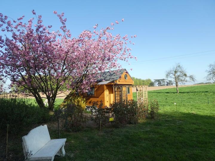 Ma petite maison ( Tiny House )